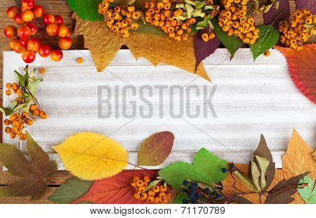 Autumn Leaves And Berry Over Wooden Background With Copy Space