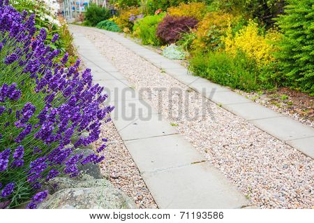 A Gravel Pathway Between Formal Beds Of Lavender Leading To An Old Sundial And Trimmed Hedges Beyond
