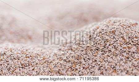 Psyllium Seeds Background