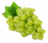 foto of grape  - green grapes isolated on the white background - JPG