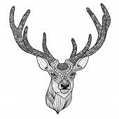 picture of antlers  - Patterned deer head with big antlers vector illustration - JPG