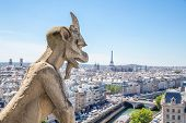 picture of gargoyles  - Gargoyle Stryge and demon at Notre Dame of Paris overlooking the skyline at a summer day  - JPG