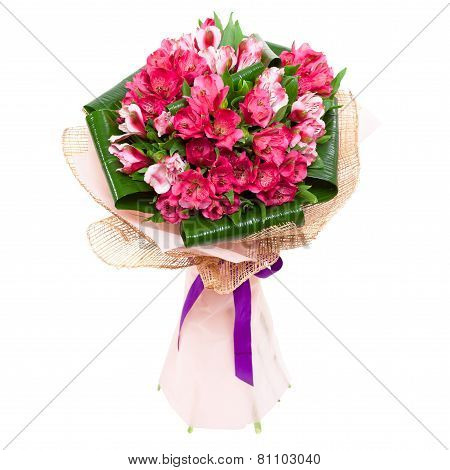 Tulips Bouquet For Woman
