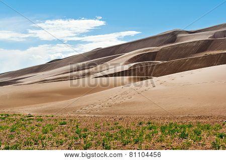 Sand Dunes Desert Landscape