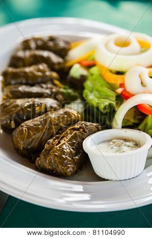 Traditional Appetizer Dolma