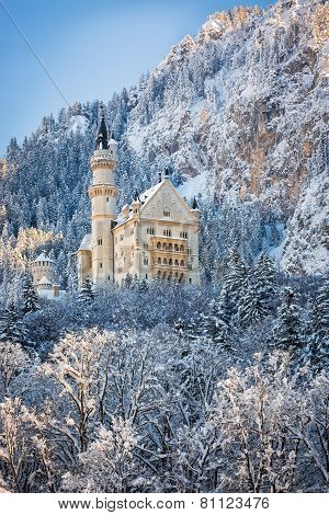 Neuschwanstein Neuschwanstein Castle in wintery landscape, Germany