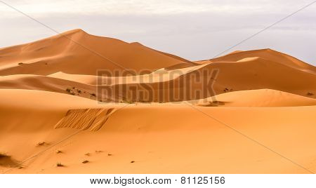 Erg Chebbi Sand Dunes In The Moroccan Desert
