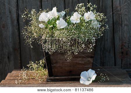 Fresh Garden White Petunia Bouquet In Wooden Vase On Wooden Table