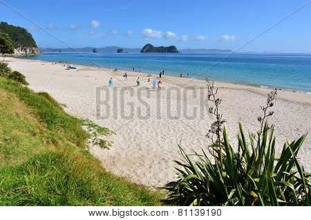 Hahei Beach - New Zealand
