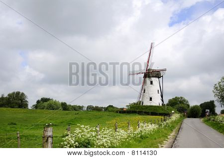 Belgium, Damme, Windmill In Green Field