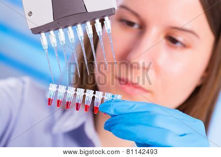 Lab with a pipette in a medical lab