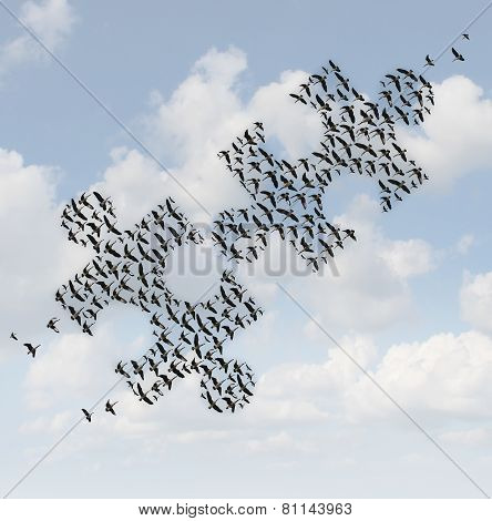Flying Birds Puzzle