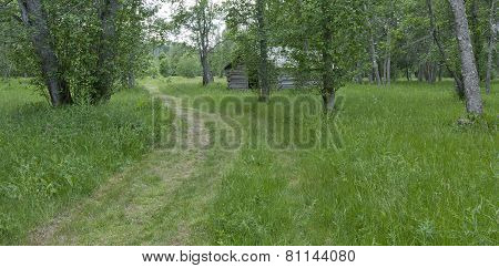 Old fashioned meadows from former farming life.