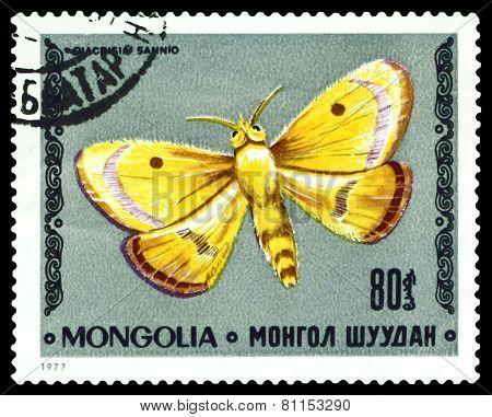 Vintage  Postage Stamp. Butterfly Diacrisia Sannio.