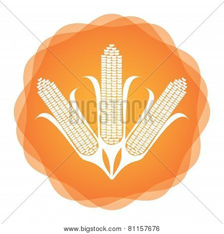 Maize Icon, Agricultural Concept