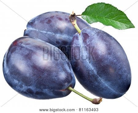 Three plums with leaf isolated on a white background.