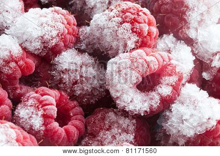 Frozen Berries. Closeup. Macro. Raspberries. Raspberry.