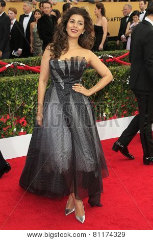 LOS ANGELES - JAN 25:  Nimrat Kaur at the 2015 Screen Actor Guild Awards at the Shrine Auditorium on January 25, 2015 in Los Angeles, CA