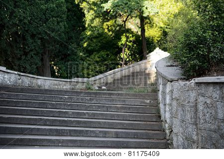 Staircase in the old park