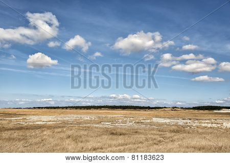 Dune Grass With Blue Sky
