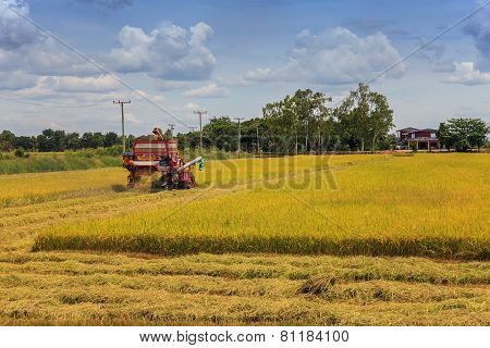 harvester machine on rice field