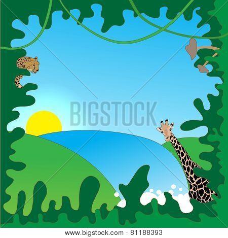 Jungle border