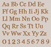 foto of alphabet  - Knitted Alphabet from grandma - JPG