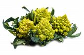image of romanesco  - a group of fresh Romanesco broccoli cabbage - JPG