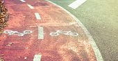 picture of bike path  - Bicycle road symbol on a street bike lane with autumn leaves in the sidewalk border - JPG