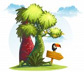 picture of toucan  - Illustration jungle trees with wooden pointer and bird toucan - JPG