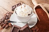foto of cocoa beans  - Cup of hot chocolate with whipped cream cocoa powder cocoa beans and pieces of chocolate - JPG