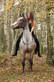 stock photo of appaloosa  - Young girl with appaloosa horse in autumn forest