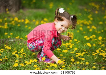 Cute Pretty Little Girl  With Yellow Dandelions