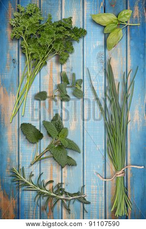 Collection On Herbs