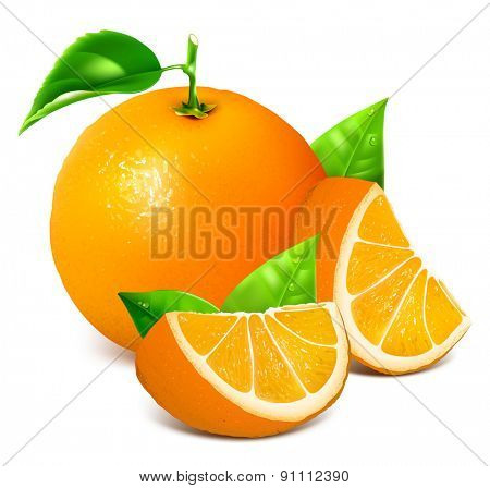 Fresh ripe oranges with leaves. Vector illustration.