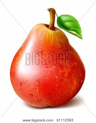 Ripe red pear with leaf. vector illustration.