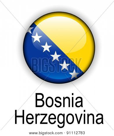 bosnia and herzegovina official state flag