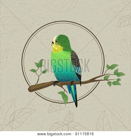 Parrot Sketch. Decorative Bird