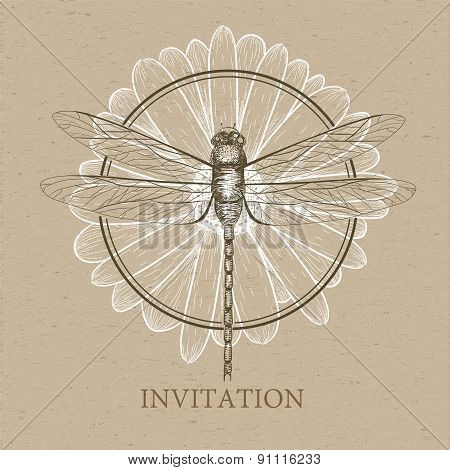 Dragonfly Sketch. Invitation Card