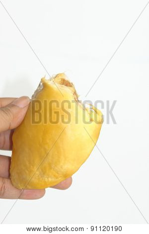 Brown Seed Of Durian Isolate