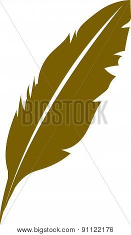 vector of feather