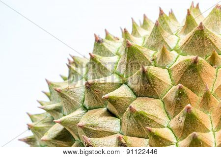 Close Up To Thorns Of Durian
