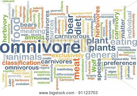 Background concept wordcloud illustration of omnivore
