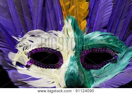 Colorful Mardi Gras Mask