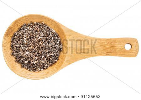 chia seeds on a small wooden spoon isolated on white with a clipping path