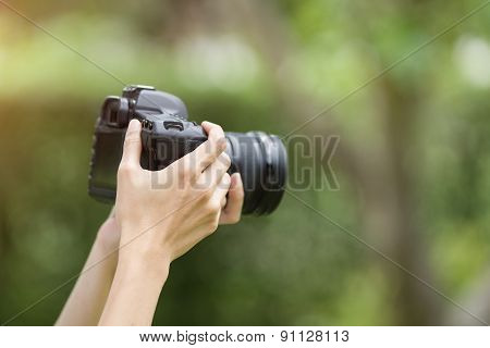 Woman Hand Holding Camera And Preview Picture