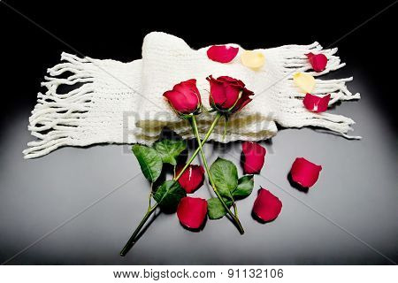 two red roses together with red petals on a black background on a scarf
