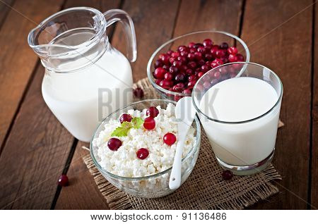 Cheese, milk and cranberries on a wooden table in a rustic style