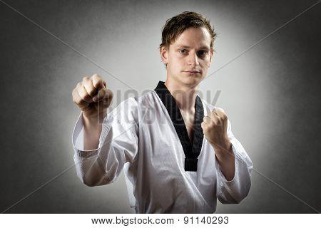 Taekwon Do Master