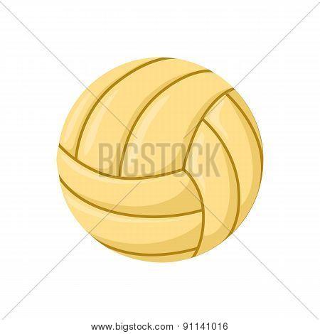 Ball beach toy.